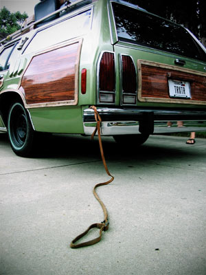 Recommended dog barriers? Truckster_dog_leash