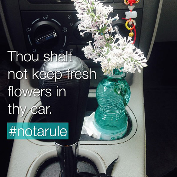 fresh-flowers-in-car