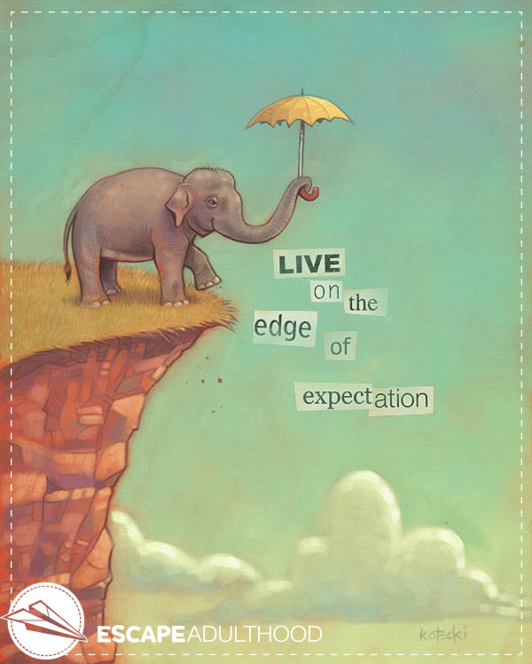 edge-of-expectation-elephant