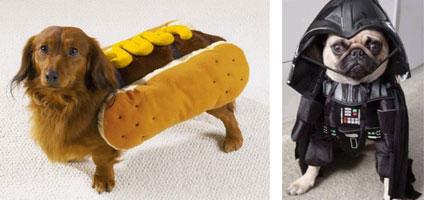dog_costumes.jpg