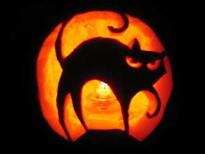 29 Awesome Jack-O-Lantern Pumpkin DesignsJack O Lantern Patterns Cat