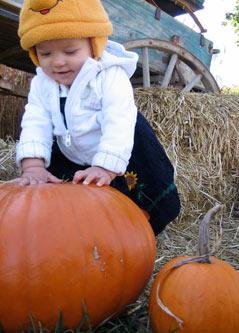 lucy_pumpkin