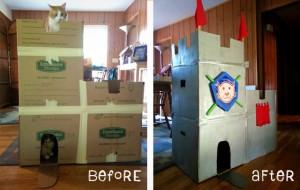 Woman Builds Cardboard Castle for Cats, Rejuvenates Creative Spirit