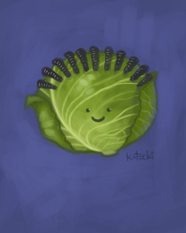 cabbage-with-cornrows