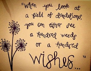 Do You See Weeds or Wishes?