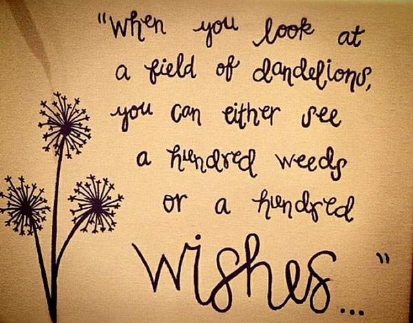 hundred-wishes