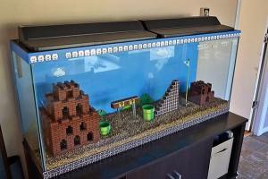 Saturday Morning Sprinkles: Super Mario Bros Aquarium Edition