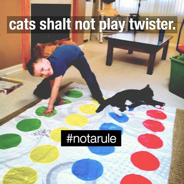 cats-playing-twister