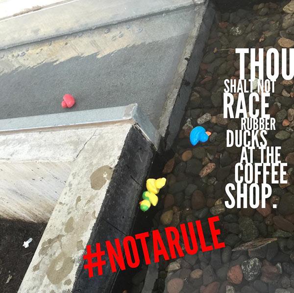 phil-gerb-duck-races