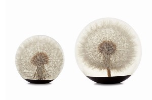 Saturday Morning Sprinkles: Dandelion Paperweight Edition