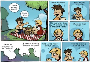 062203_picnic